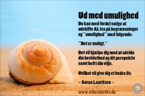 """Foto: Orangegult sneglehus på sandstrand. Tekst: Du kan med fordel vælge et mindset som siger """"Det er muligt."""" (Søren Lauritzen)"""