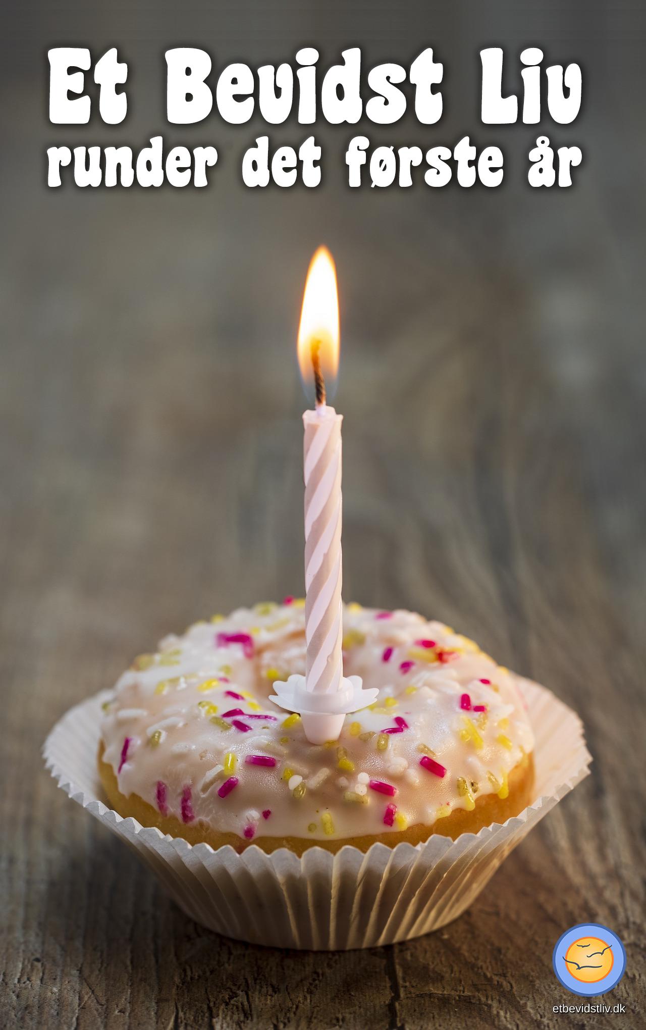 Et Bevidst Livs fødselsdag. En kage med et lys i.