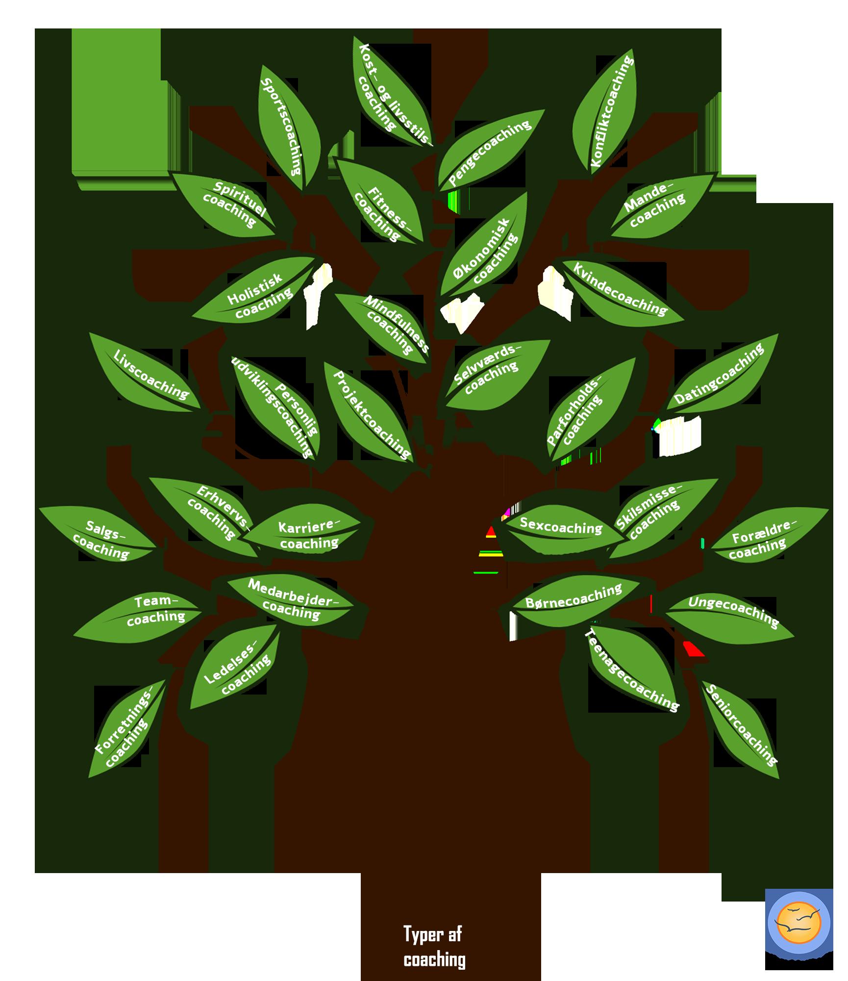 Typer af coaching illustreret på et coaching-træ.